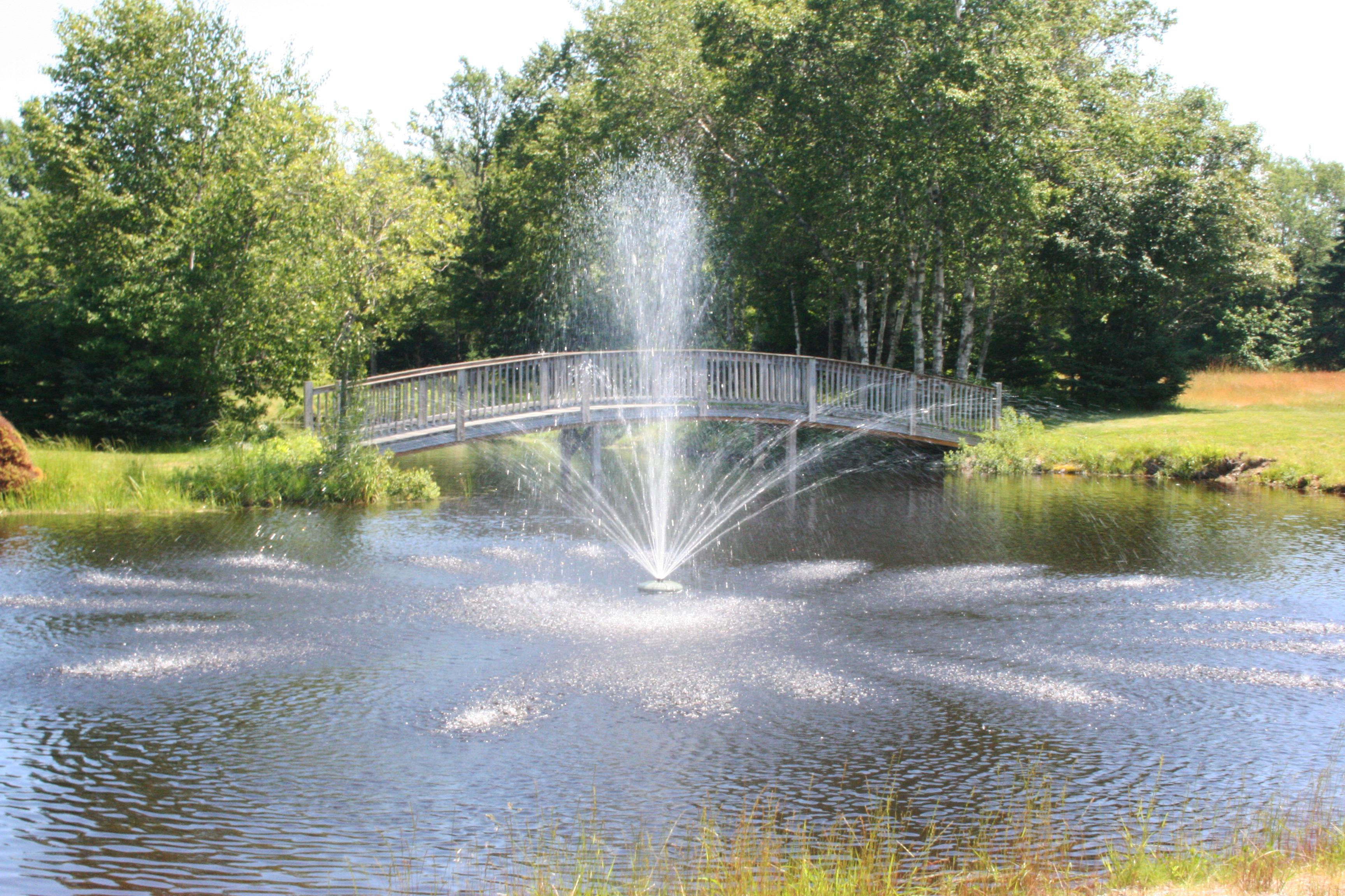 wedding wedding venue , fountain