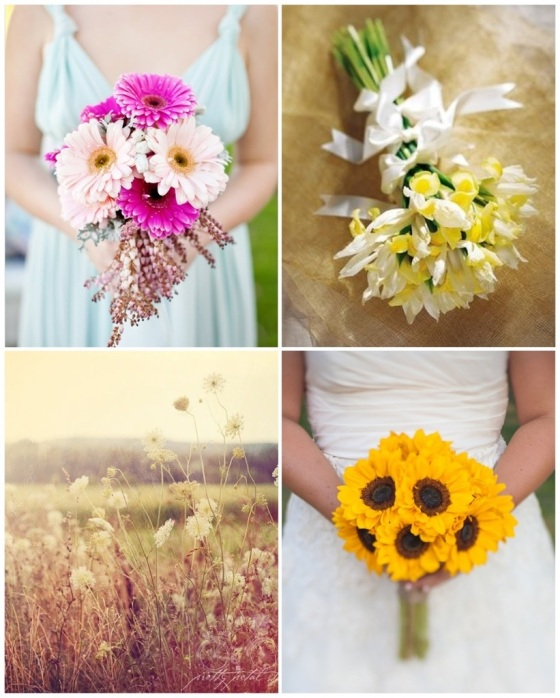 Gerbera Daisies, Irises, Queen Anne's Lace, Sunflowers