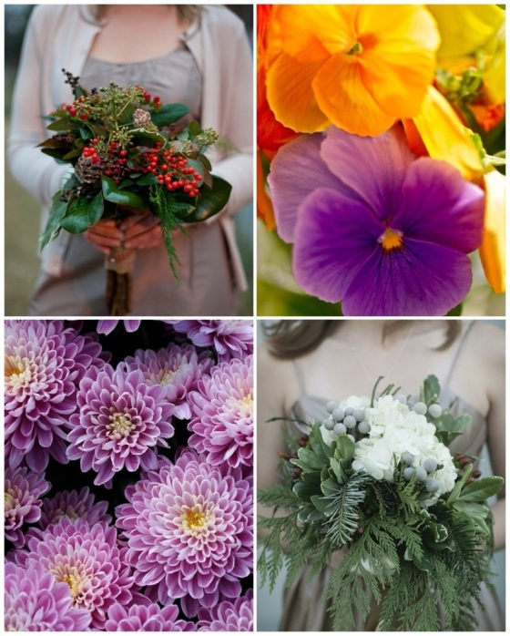 Holly Berry, Pansies, Chrysanthemums, Evergreens